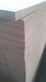 Wholesale  Natural Plywood Other Species - Poplar plywood, okoume plywood, mersawa plywood