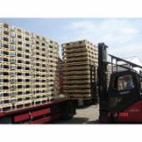 Pallets – Packaging Spruce Picea Abies - Whitewood - Pallet, New