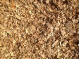 Tan Oak Wood Chips