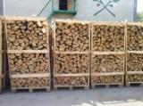 Utilaje second-hand pentru prelucrarea lemnului  aprovizionare Polonia Lemn de foc despicat - nedespicat, Lemn de foc nedespicat, Carpen