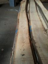 Hardwood  Unedged Timber - Flitches - Boules - European White Ash Loose from Poland