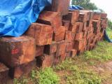 Hardwood  Logs - Pyinkadoe Log