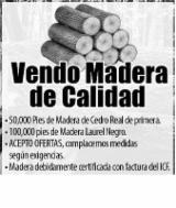 Madera En Pie En Venta - Madera de cedro de Honduras