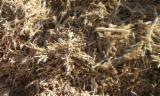 Firelogs - Pellets - Chips - Dust – Edgings - Hardwood Chips 1