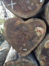 Tropsko Drvo  Trupci - Mljevenje,Sitnjenje, Tali (Missanda, Elune, Muave, Kassa), Kongo