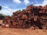 Hardwood  Logs For Sale - Pyinkado Square Logs