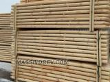 Wood Logs For Sale - Find On Fordaq Best Timber Logs - Machine rounded poles