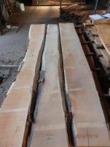 Hardwood  Unedged Timber - Flitches - Boules FSC - Beech lumber steamed unedged