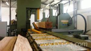 New-USTUNKARLI----Sawmill-in