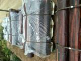 Tropical Wood  Logs - Industrial Logs, Letterhout, Suriname