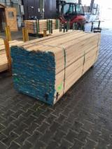 Tropical Wood  Sawn Timber - Lumber - Planed Timber - Wawa/Samba sawn timber offer
