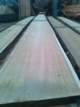 Softwood  Unedged Timber - Flitches - Boules Pine Pinus Sylvestris - Redwood For Sale - Siberian Larch ANGARSK 200 $