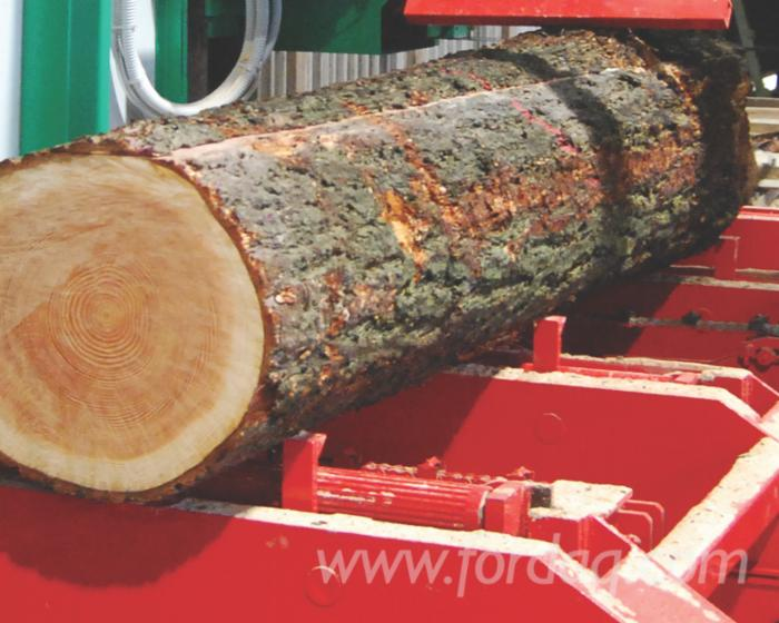 New-horizontal-log-band-saw
