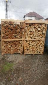 Firewood, Pellets And Residues - Beech Firewood/Woodlogs Cleaved -- mm