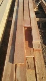 Softwood  Sawn Timber - Lumber Spruce Pine For Sale - Russia SİBERİA LARCH - Larix Sibirica Angarsk