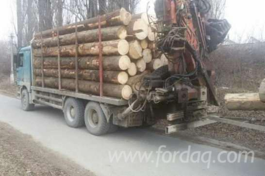 Street-Vehicles--Short-Log-Truck