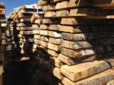 Hardwood  Logs Peeling Logs - Peeling Logs, Birch (Europe)