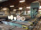 Used 1st Transformation & Woodworking Machinery Belgium - Saws, Log Band Saw Vertical, ARTIGLIO / CANALI