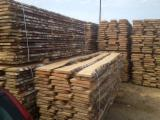 Hardwood  Unedged Timber - Flitches - Boules Lithuania - Birch lumber
