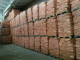 Wholesale  Wood Pellets ISO-9000 - Kindling soft wood 5dm3