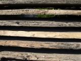 Laubholz  Blockware, Unbesäumtes Holz - Mooreichenbretter 15-16% Feuchtigkeit