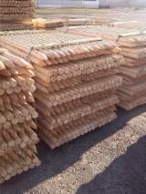 Softwood  Logs - Cylindrical trimmed round wood