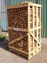 Hardwood  Logs Firewood - Firewood, Beech (Europe)