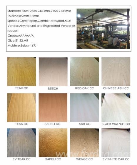 oak-beech-maple-teak-fancy-deorative-plywood