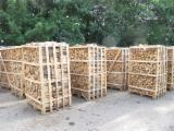 Wholesale Energy Products - Other Types Poland - Oak and beech firewood
