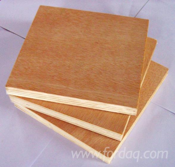 White-birch-plywood-bintangor