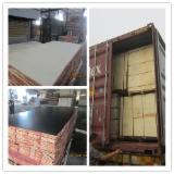 MARINE PLYWOOD 18MM = 1 year QUALITY GURANTEE .
