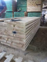 Hardwood - Square-Edged Sawn Timber - Lumber  - Fordaq Online market Fresh edged lumber