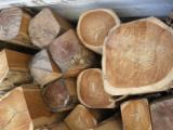 Cameroon - Furniture Online market - Teak / Doussie / Ayous Logs 70 cm