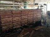 Rotary Cut Veneer Eucalyptus - Styrax core veneer best quality from vietnam