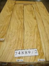 Sliced Veneer AA Extra For Sale Italy - Natural Veneer, Olive, Flat cut, plain