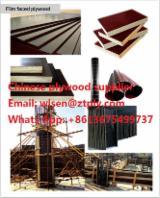 Plywood - supplying concrete formwork; film faced plywood