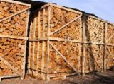 Buy Firewood/Woodlogs Cleaved from Romania - Beech  Firewood/Woodlogs Cleaved -- mm