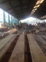 Satılık Komple Şirket - Kereste Hasat Şirketi Peru Satılık