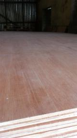 Plywood For Sale - Supply Red-face Plywood