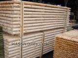 Softwood  Logs FSC - Machine-rounded poles