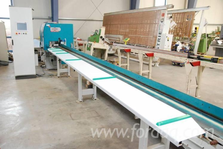 Used-2006-REINHARDT-VARIO-LINE-110-Optimization-cross-cut-saw-for-sale-in