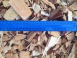 Wholesale Maritime Pine (Pinus pinaster) Wood Chips From Used Wood in Ukraine