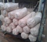 Wood Shavings - Wood Shavings -- mm