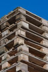 Finden Sie Holzlieferanten auf Fordaq - Ladepalette, Neu