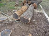 null - Schnittholzstämme, Ebony