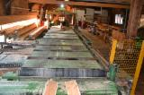 Woodworking Machinery Austria - Used 1997 Reitshammer Gatterrollgang in Austria