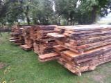 硬木:毛边材 - 毛刺 - 圆柱 克罗埃西亚 - 木球, 橡木