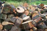 Firelogs - Pellets - Chips - Dust – Edgings Other Species For Sale Germany - Oak firewood from Germany