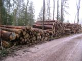 Hardwood  Logs - Looking for industrial logs / energy wood