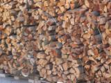 Macchine lavorazione legno   Germania - IHB Online mercato Seghe Circolari TROMMELSÄGE / REVOLVERSÄGE: Kretzer Rotomat, Vogesenblitz odg. Usato 2015 in Germania